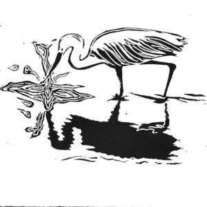 Egrets (I've had a few)